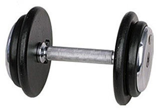 inSPORTline Single-Handed Dumbbell Profi DBS2601 25kg