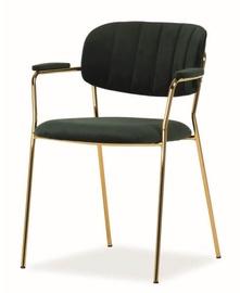 Ēdamistabas krēsls Signal Meble Carlo II Velvet Green/Gold