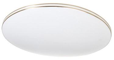 Gaismeklis Verners Auster Lamp 48W LED White