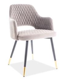 Стул для столовой Signal Meble Franco Velvet Grey/Gold, 1 шт.