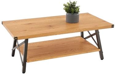 Kafijas galdiņš Halmar Katarina Golden Oak/Black, 1100x420x600 mm