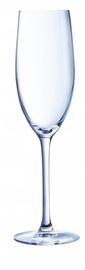 Šampanieša glāze Chef and Sommelier, 0.24 l, 1 gab.