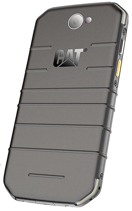 CATerpillar S31 Dual Black