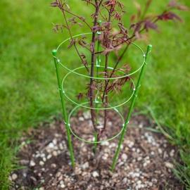 Auga atbalsts Garden Center Plant Holder G10603A