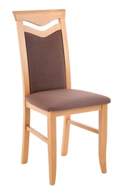 Halmar Citrone Bis Chair Alder/Brown