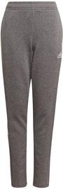 Adidas Tiro 21 Sweat Pants GP8809 Grey 164 cm