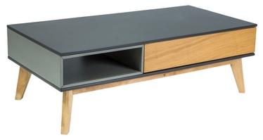 Kafijas galdiņš Signal Meble Roma A Grey, 1200x600x400 mm