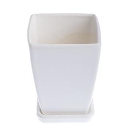 Puķu pods SN Flower Pot Papartis Ø14cm White