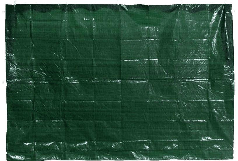Lapenes siena Diana PE Green, 290x195 cm