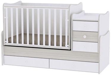Bērnu gulta Bertoni Lorelli Maxi Plus White/Light Oak, 167x72 cm