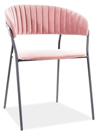 Ēdamistabas krēsls Signal Meble Modern Lira B Velvet, rozā