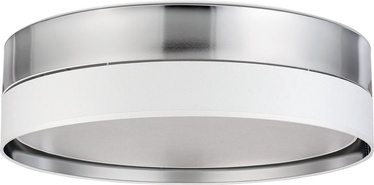 Lampa TK Lighting Hilton Silver 4179, 15 W, 4 gab.