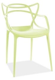 Стул для столовой Signal Meble Toby, зеленый