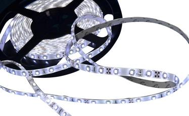 Vagner LED Strip 3528 9.6W IP65 White