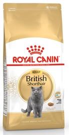 Royal Canin FBN British Shorthair 400g