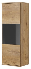 Шкаф-витрина Halmar Nest W-1 Oak/Black, 40x30x110 см