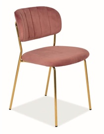 Ēdamistabas krēsls Signal Meble Carlo Velvet Antique Pink/Gold, 1 gab.