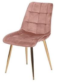 Ēdamistabas krēsls Signal Meble Chic Velvet Pink/Gold, 1 gab.