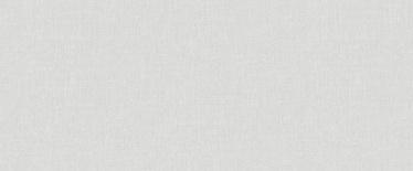 TAPE FLIZ 984103 PELĒK VIENKRĀ 1.06M (6)