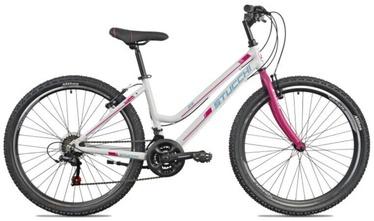 "Velosipēds Stucchi MTB Lady 1WX100, balta/rozā, 16"", 26"""