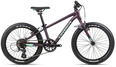 "Velosipēds Orbea MX 20 Dirt, violeta, 20"""