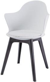 Ēdamistabas krēsls Signal Meble Matteo II White, 1 gab.
