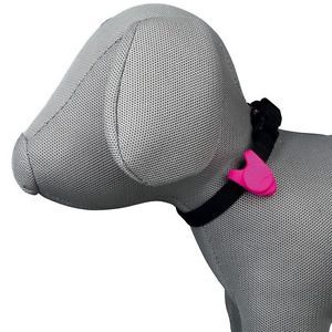 Брелок Trixie Flasher For Dogs, синий/зеленый/oранжевый/розовый