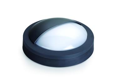 Domoletti Poli BL170CP07D-M, 12W, LED, IP65