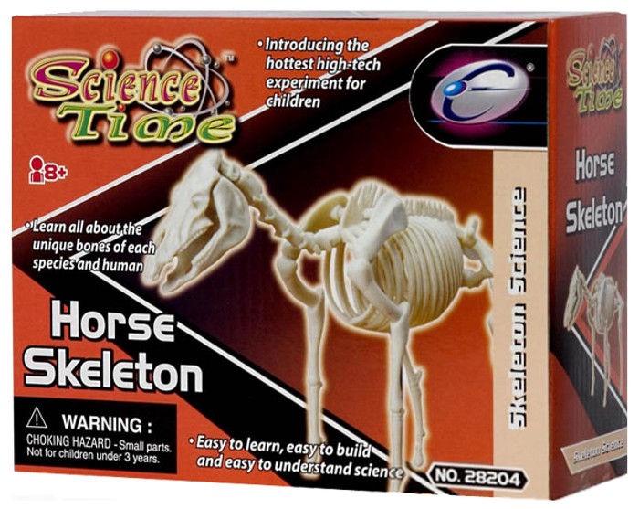 Intelektuāla rotaļlieta Eastcolight Horse Skeleton 28008/28204