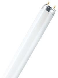 Флюоресцентная лампа Osram Lumilux T8, 30W, G13, 6500K