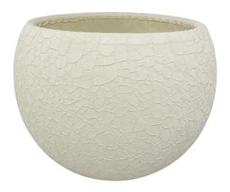 Puķu pods SN Ceramic Pot Lizard Ø12cm Creamy
