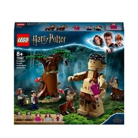 Konstruktors LEGO Harry Potter Aizliegtais mežs: sastapšanās ar Ambrāžu 75967, 253 gab.
