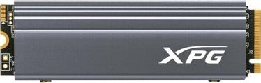 Cietais disks (SSD) ADATA XPG Gammix, SSD, 1 TB