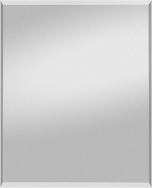 Spiegel Profi Mirror Max 50x70cm