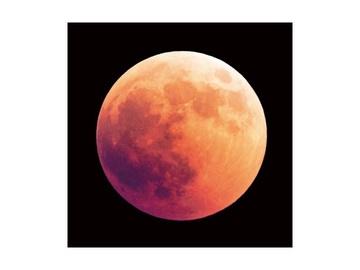 Fotoattēls Signal Meble Moon, 800 mm x 800 mm