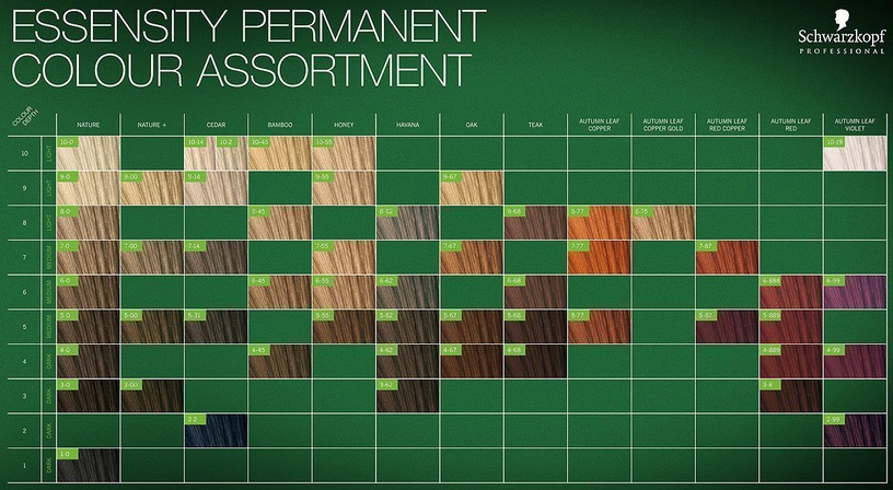 Schwarzkopf Essensity Ammonia Free Permanent Color 60ml 9-55