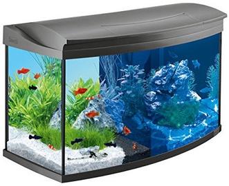 Tetra AquaArt Aquarium 100l
