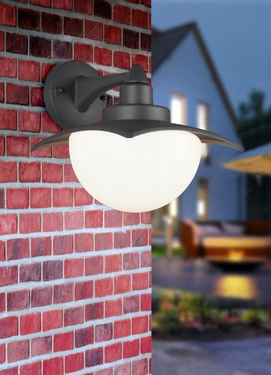 Trio Donez antracīta / balta sienas lampa, IP44, 1x E27