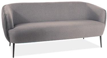 Dīvāns Signal Meble Lenox 3 Grey, 79 x 176 x 74 cm