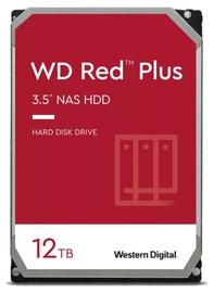 Servera cietais disks (HDD) Western Digital WD120EFBX, 256 MB, 12 TB