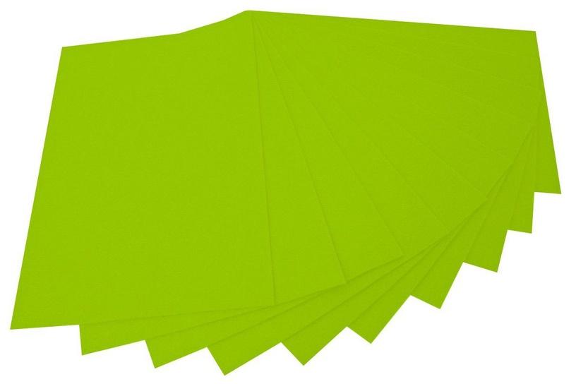 Folia 20 x 30cm 150g/m2 10pcs Green