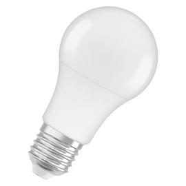 LAMPA LED A60 8.5W E27 4000K 806LM PL/MA