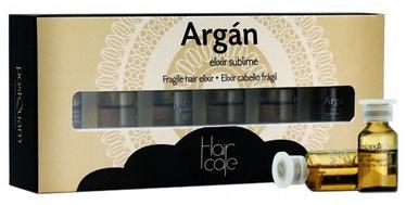 PostQuam Professional Fragile Argan Hair Elixir 6x3ml