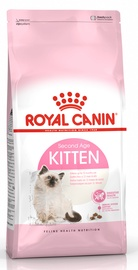 Royal Canin FHN Kitten 4kg