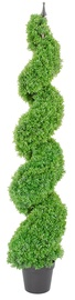 Home4you Boxwood Artificial Plant H150cm Green