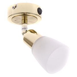 Verners Spotlight SIMPLE 5040-1A/GO Gold