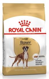 Сухой корм для собак Royal Canin BHN Boxer Adult 12kg