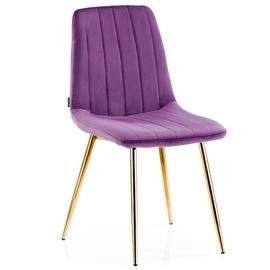 Ēdamistabas krēsls Homede Sarva Violet, 4 gab.