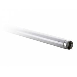 Spuldze lumin. Spectrum T8, 18W, G13, 3000K, 1650lm