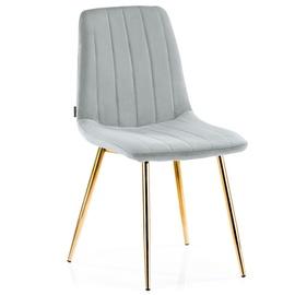 Homede Sarva Chairs 4pcs Silver